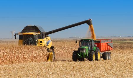 Landwirtschaft Öle und Fette